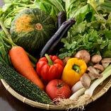 台湾野菜をふんだんに使用したお料理の数々をお楽しみください