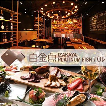 白金魚 PLATINUM FISHバル