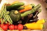 契約農家から届く有機野菜