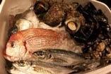 市場から仕入れる鮮魚
