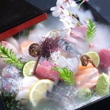 ◆旬の朝獲れ鮮魚をたっぷり堪能!
