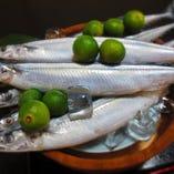 旬の魚を取り揃えております(例→秋さんま)