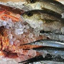 地元大社漁港より仕入れた自慢の鮮魚