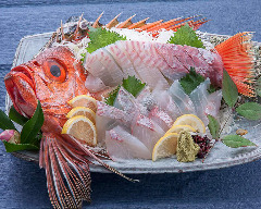金時鯛の刺身