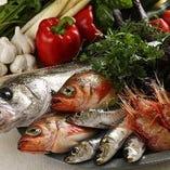 新鮮な旬の魚介を使ったメニューもございます