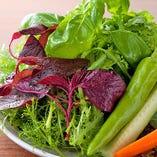【契約農家直送♪】朝採れ野菜【全国各地】