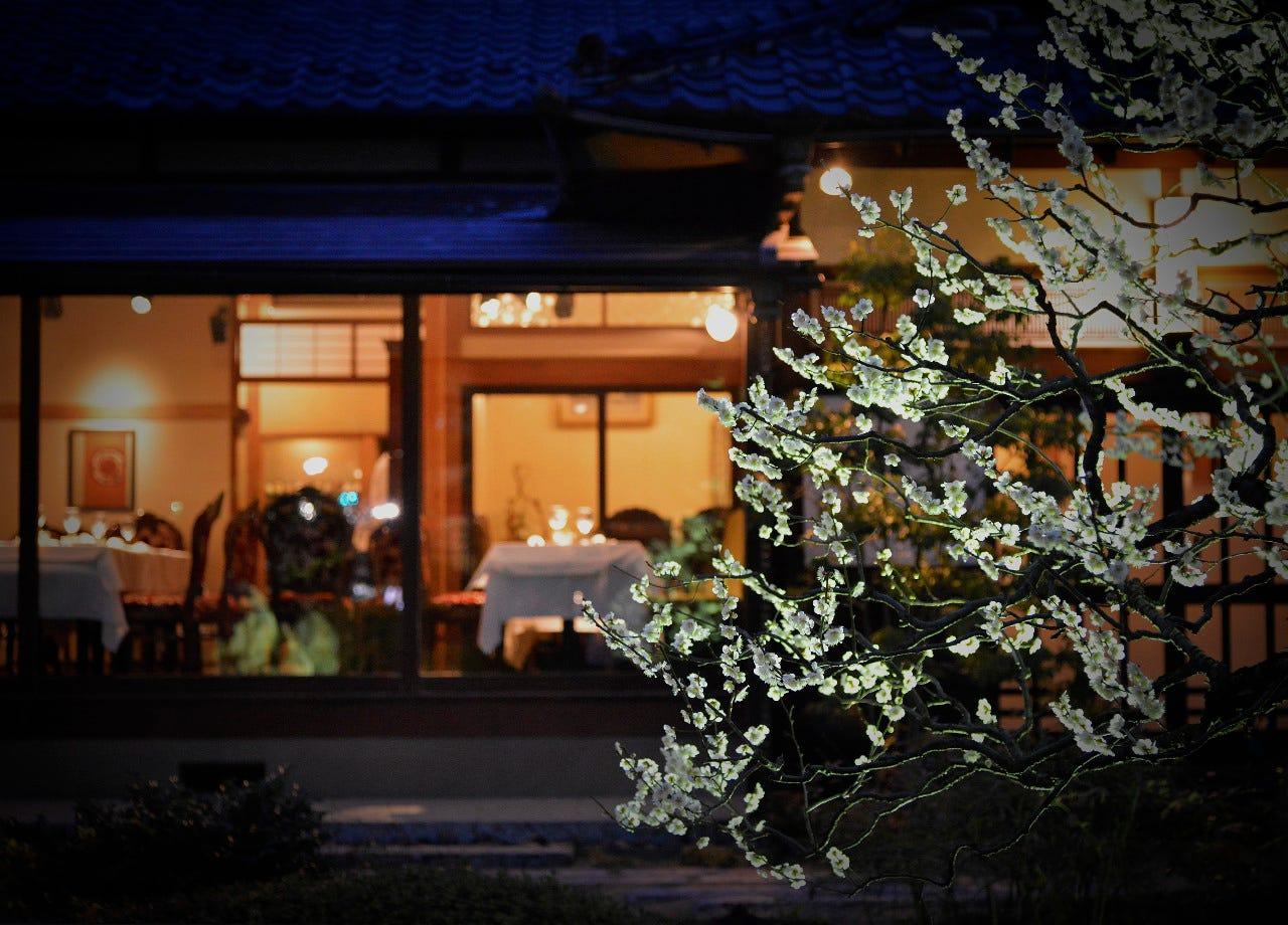 ライトアップされた庭園を眺めながらお食事をお楽しみください
