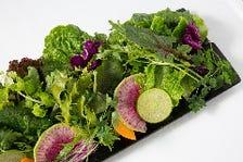 『医食同源』食べながら健康に…
