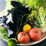 地元野菜【三重県】