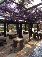 ガーデンカフェ&バーベキュー ベルトゥリー