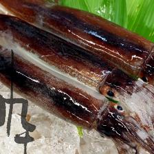 鮮度、旬を堪能しつくす魚介類