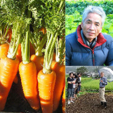 自家農園開始! 元気な無農薬野菜!
