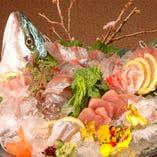 博多漁港より、朝水揚げされたばかりの天然鮮魚を直送