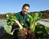 京丹後にある自家農園 愛情込めて育てています