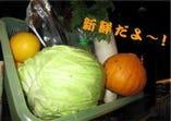 新鮮な地元のお野菜を使ってます!!