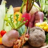 丹波産の無農薬野菜【兵庫県】