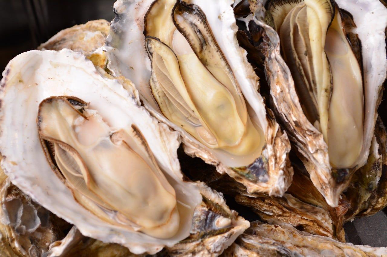 【4月START】牡蠣のガンガン焼き