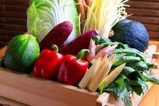 新鮮採れたて季節野菜