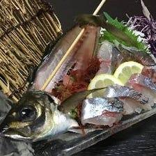 厳選された旬の地魚を満喫
