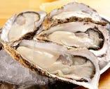 ■シーズンごとに旬な牡蠣を召し上がれ!!本日のお勧め牡蠣!
