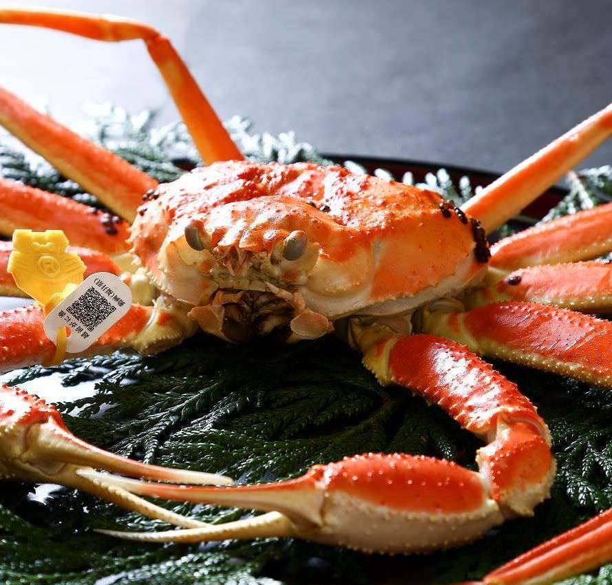【越前かに料理】漁港直送の極上カニ