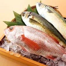 抜群のコスパで新鮮なお魚を楽しめる