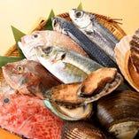 毎日入荷!新鮮なお魚!【全国各地】