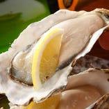 産地直送!国産生牡蠣は産地を厳選して日替わりで提供致します♪