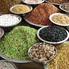 インド・ネパール料理マヤ