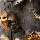 松茸など6種類使用。