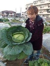 自家農園で野菜を無農薬有機栽培!