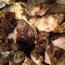 日々、新鮮な魚介類が食べられる。