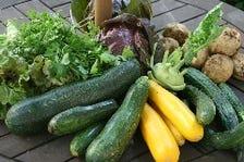 滝瀬農園の温野菜 バーニャカウダーソース