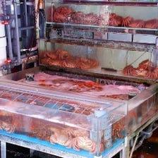 海鮮問屋栄屋の直営店の本格海鮮丼