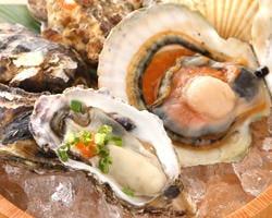 本日のセリ買い鮮魚 大魚(おおうお)  コースの画像
