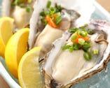 日本一とも言われるプリップリの 厚岸産殻付生牡蠣は一ケ490円♪