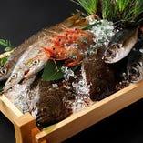 毎朝仕入れる鮮魚【豊洲直送】