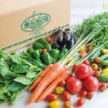 東北牧場の無農薬野菜を使用!新鮮な野菜・野草のメニュー多数…