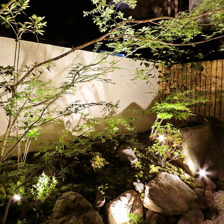中庭を眺めながら優雅に