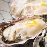食べて免疫力UP!海のミルク「牡蠣」 その時期の旬の牡蠣をご用意