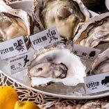 生牡蠣はもちろん、牡蠣を色々な調理方法で楽しめます♪