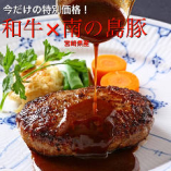 ★今だけ特別★和牛&宮崎県産!南の島豚のハンバーグ1760円