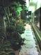 お座敷席からはライトアップされた庭園も御覧頂けます