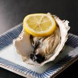 市場直送の新鮮なカキを使い、プリプリの食感とカキ本来の旨味を味わえる「岩ガキ」