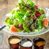 森崎農園の10種野菜サラダ