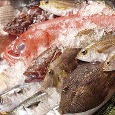 【自慢】漁港直送鮮魚とイケス活魚
