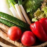 もつ鍋やサラダなどでお出しする野菜はすべて国産です