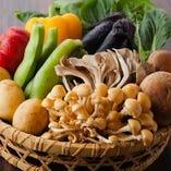 地元の新鮮野菜は彩りも◎