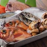 【旬の食材】 旬の食材を厳選して市場で直接仕入れ