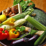 神戸市西区の農家で朝採れたばかりの野菜を、週に数回、直接届けていただきます。